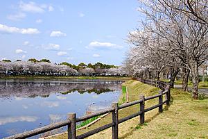 乙戸沼公園02