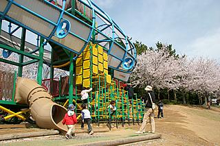 霞ヶ浦総合公園の桜02