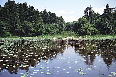 宍塚大池02