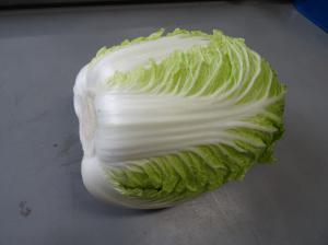 『白菜』の画像