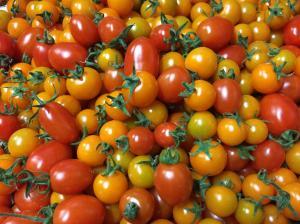 『トマト』の画像
