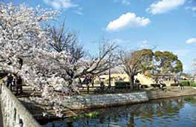 『土浦の公園1』の画像